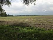 Продам земельный участок 82.6 га,