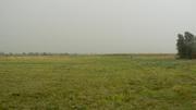 Продаем земельный участок 15 га